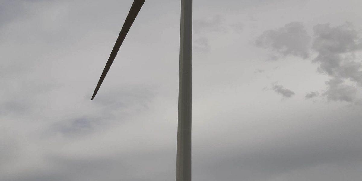 Whitla Wind